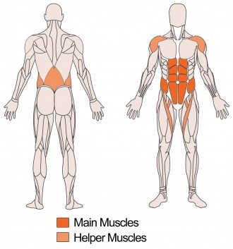 Main and Helper muscles targeted with Overhead Weighted situps Exercise